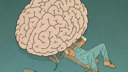 """""""Tẩy não"""" để đón xuân"""