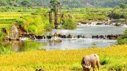 Nhìn vào dòng du khách Việt: Sức mua nội địa và sức mạnh nội tại