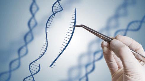 Chỉnh sửa gen thiết kế một đứa con hoàn hảo?