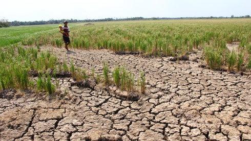 Nước và nghịch lý thừa - thiếu