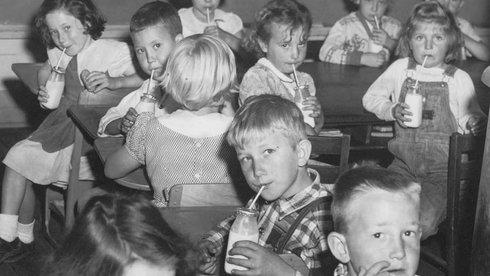 Sữa học đường: Để thị trường tự do đến đâu?