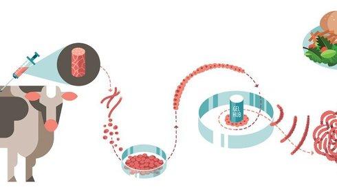 Nhìn lại nghiên cứu thịt nhân tạo: Thịt giả nhưng dinh dưỡng thật