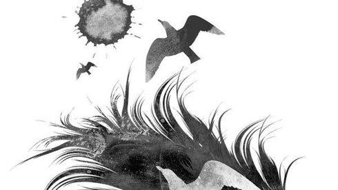 Tiểu luận của nhà văn Janusz Leon Wisniewski: Về một cuộc đời bị đánh cắp