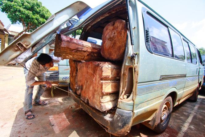 Một xe gỗ lậu bị bắt giữ tại huyện biên giới Đức Cơ, tỉnh Gia Lai - Ảnh: TIẾN THÀNH
