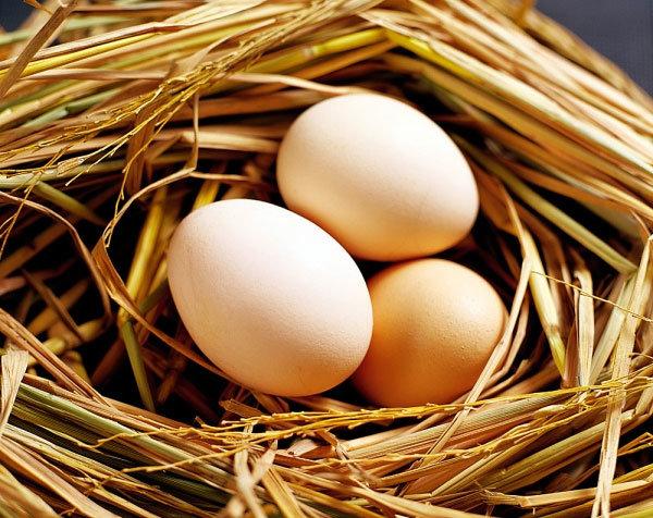 Trứng gà có công dụng bổ thận