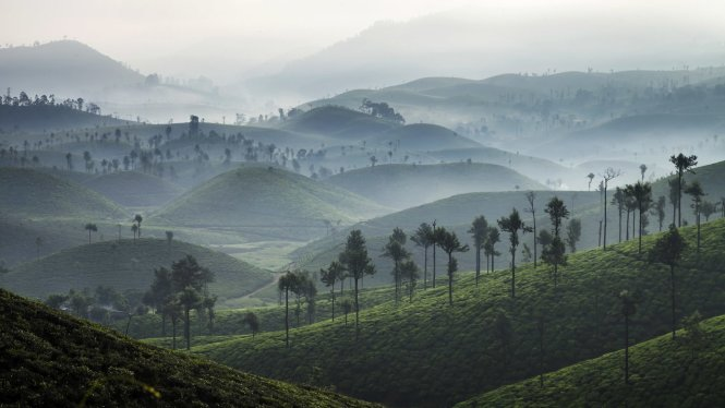 Valparai, a lesser known scenic spot in India's Tamil Nadu region, is located 3,500 feet above sea level and is often shrouded in a gentle mist first thing in the morning © Getty Images