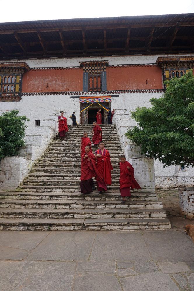 Ở Bhutan tự do tôn giáo nhưng hầu hết theo đạo Phật tiểu thừa. Vậy nên cả nước không có… lò mổ, phải nhờ người Ấn qua giết mổ gia súc để ăn. Người Ấn bận thì cả nước ăn chay.