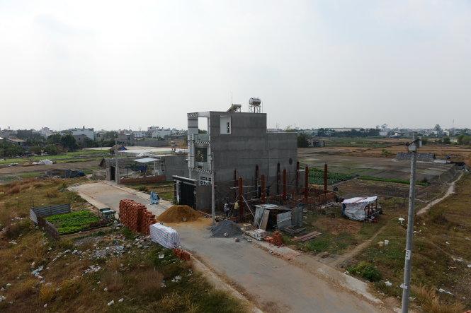 Các thửa đất được UBND huyện Hóc Môn cho phân nền tách thửa xây nhà tại xã Thới Tam Thôn - Ảnh: Hữu Khoa