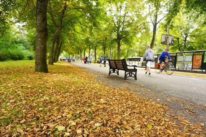 Mùa thu ở Stockholm cũng như nhiều thành phố khác ở châu Âu đôi khi khá buồn. -Ảnh: c.n.
