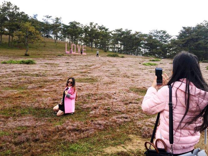 Du khách đổ xô chụp ảnh ở đồi cỏ hồng cách Đà lạt 15km