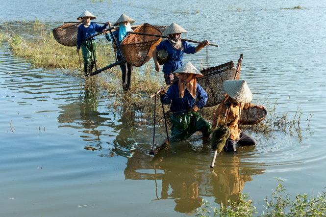 Ra đồng,. Ảnh: Nguyễn Ngọc Mai