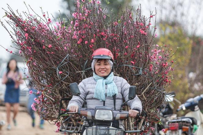 Hoa đào Nhật Tân đã bắt đầu theo chân các chị vào 36 phố phường Hà Nội. Ảnh: Nam Trần