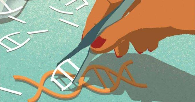 """Ảnh: Can thiệp vào gen là một """"công nghệ hai mặt"""" - Ảnh: Huffington Post"""