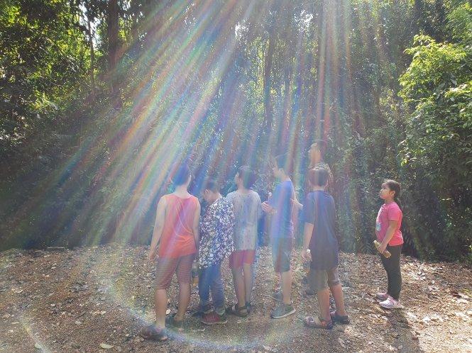 Trẻ thành phố thích thú khi lần đầu thấy ánh mặt trời xuyên qua tán lá rừng