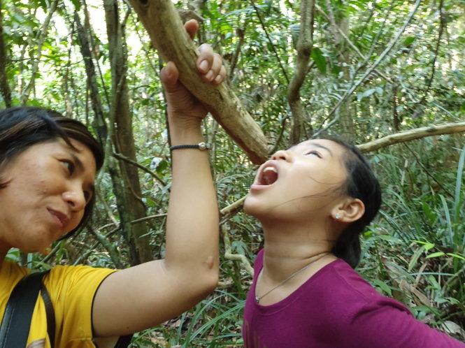 Ngạc nhiên chưa, khi uống nước từ dây leo trong rừng