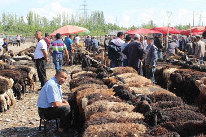 Chợ gia súc cuối tuần ở Kashgar có tuổi đời hơn 2.000 năm.