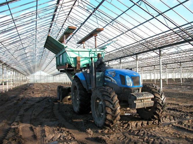 Hà Lan là một trong những nước có quy mô sản xuất nông nghiệp nhà kính lớn nhất thế giới. Ảnh: kerklaangreenhouses.nl