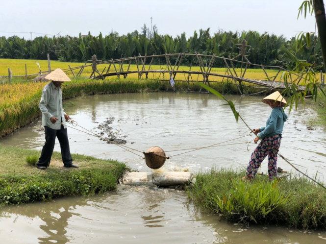 Một trong các điểm du lịch làng quê tại Hội An (Quảng Nam) đang được tổ chức lại để hướng vào khách nội địa. Ảnh: T.B.D.