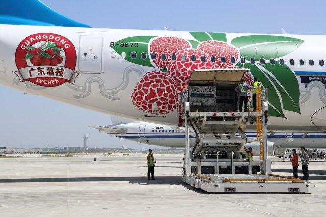 Một chuyến bay chở quả vải xuất khẩu được trang trí đặc biệt để quảng bá sản phẩm của Hãng hàng không China Southern. Ảnh: Twitter