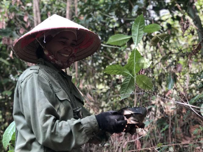 Chị Hà Thị Hường (sinh năm 1974, người Thái, bản Thín) tham gia trồng rừng phục hồi cho bản ngày 24-6-2020. Ảnh: HỒNG VÂN